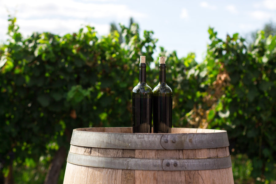 Oaked Vs Unoaked Wine: Which is Better?