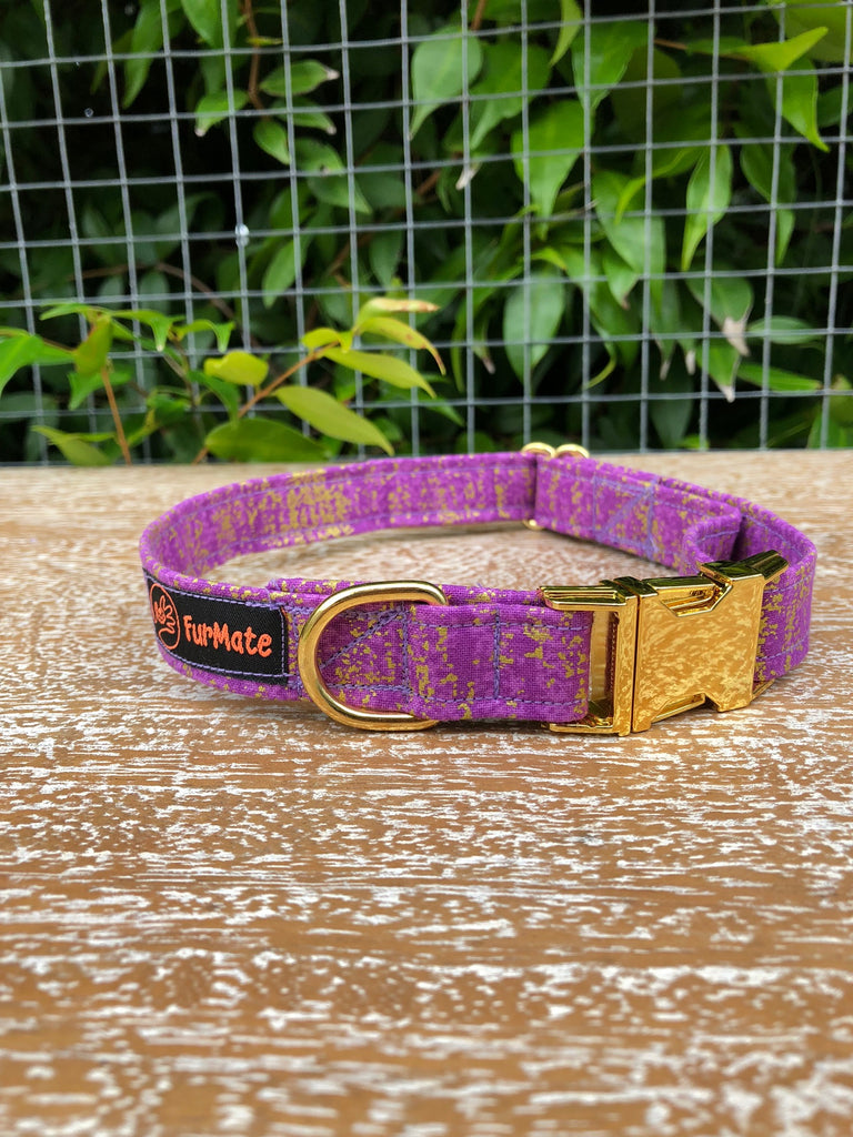 """Pawple Gold"" Collar"
