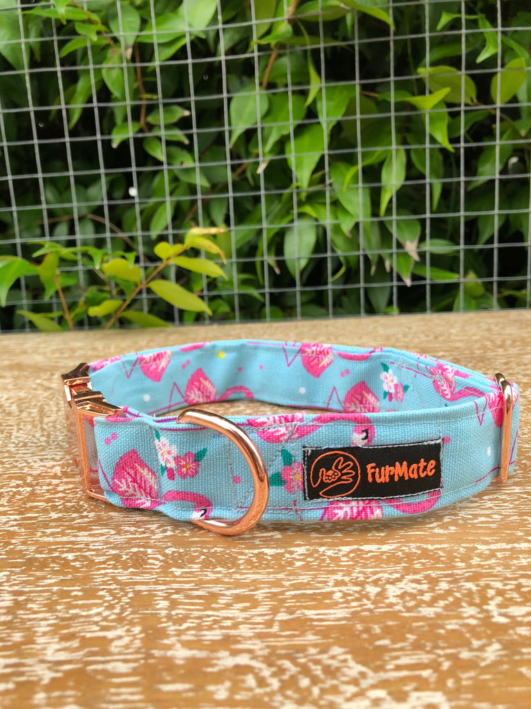 """Flamazing"" Collar"