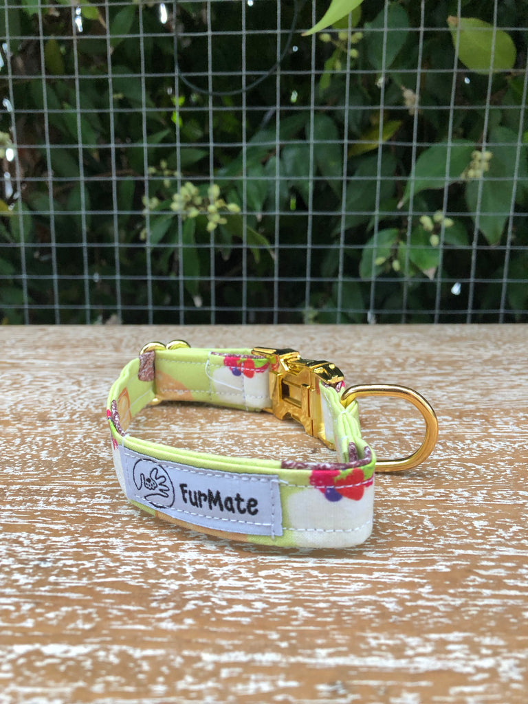 """Aussie Sweets"" Collar"