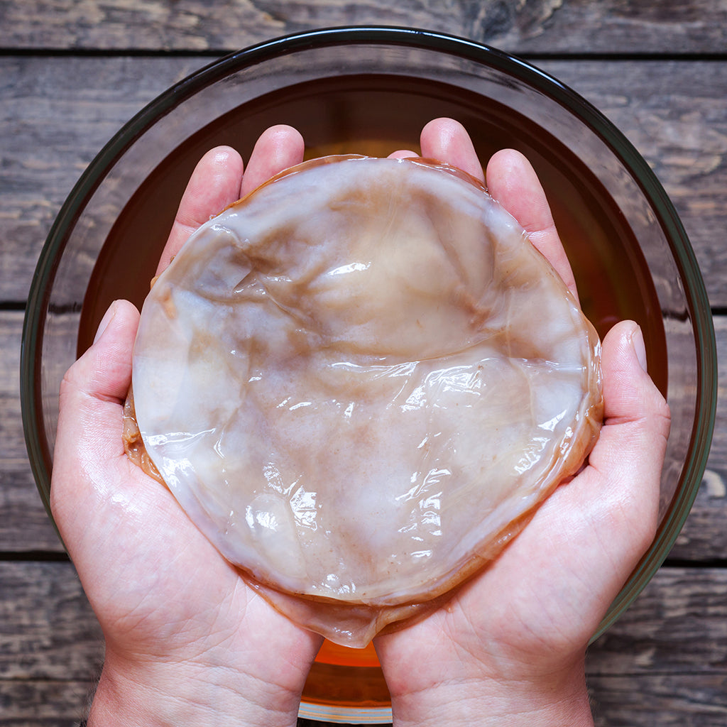 Learn to Make Great Kombucha At Home
