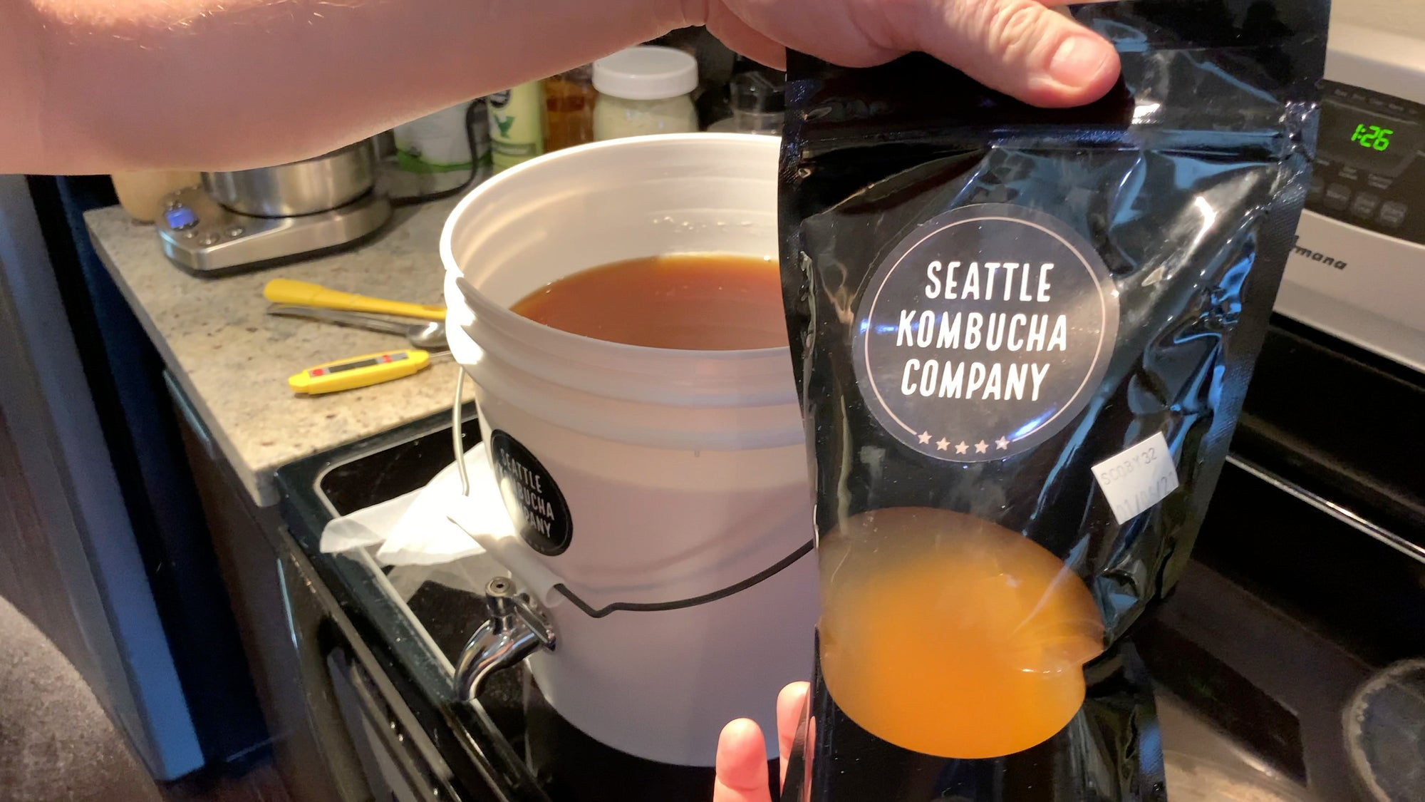 Organic Seattle Kombucha SCOBY and Liquid Starter to Make Kombucha At Home - 2 Options