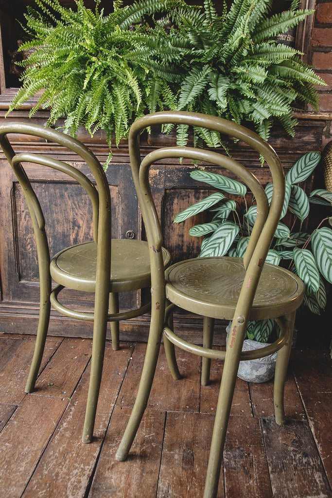 Painted green bentwood chairs . Original Thonet Chairs Dig Haushizzle Bristol