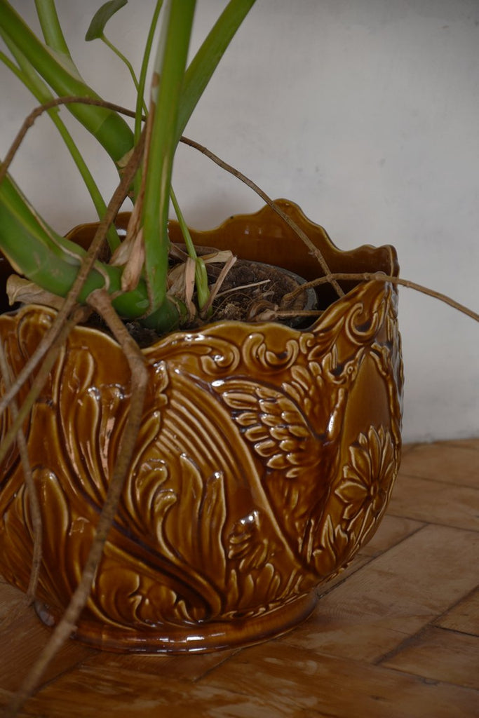 Majolica Plant Pot. Indoor plants and greenery Bristol. Vintage Interiors