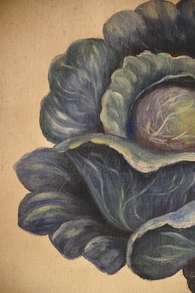 vintage painting artwork on canvas of a cabbage. Decorative interior styling and prop hire Bristol