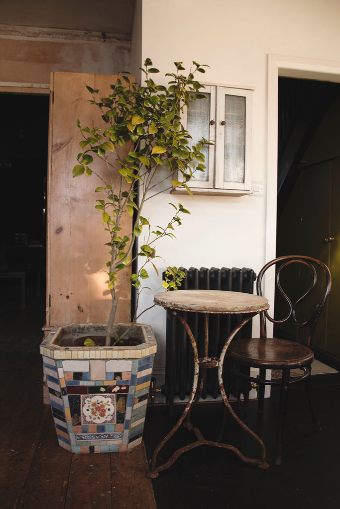 Decorative home styling and photography Dig Haushizzle Antique Shop In Bristol. Cassie Nicholas