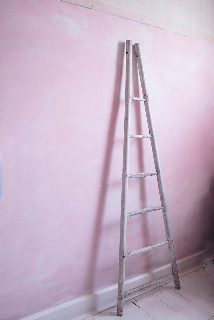 Antique French Orchard Ladder