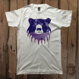 Waterfall Bear Graphic Logo Tee - Unisex - Grizzly Where