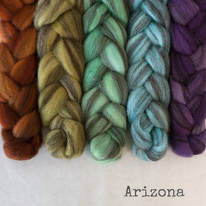 Heathered BFL Roving - Arizona - Bundle