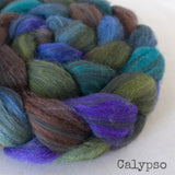 Polwarth Black Bamboo Silk Roving - Calypso