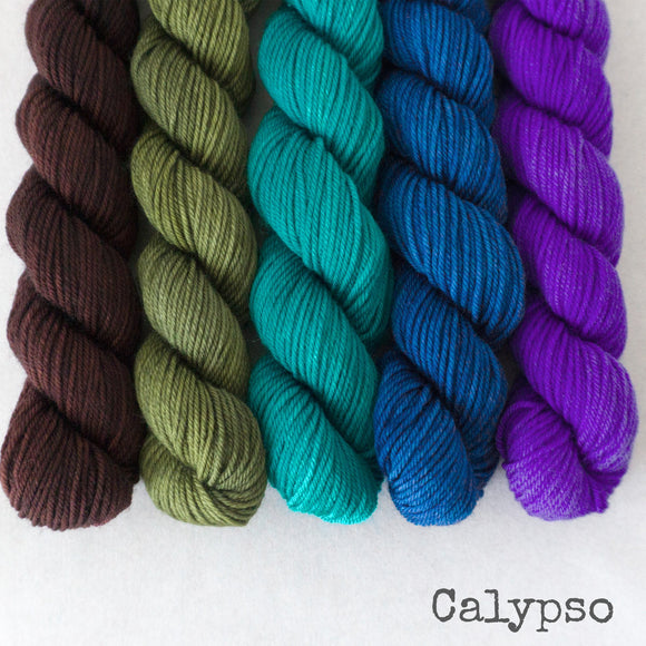 Simply Sock 5-Pack Mini Skeins in Calypso Semi Solid