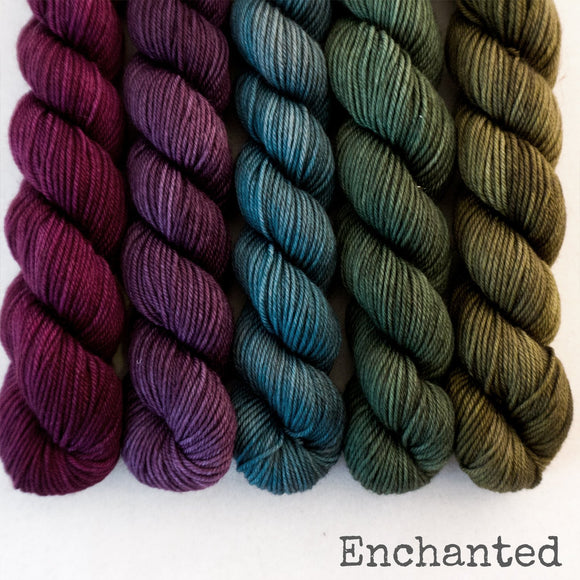 Simply Sock 5-Pack Mini Skeins in Enchanted Semi Solid