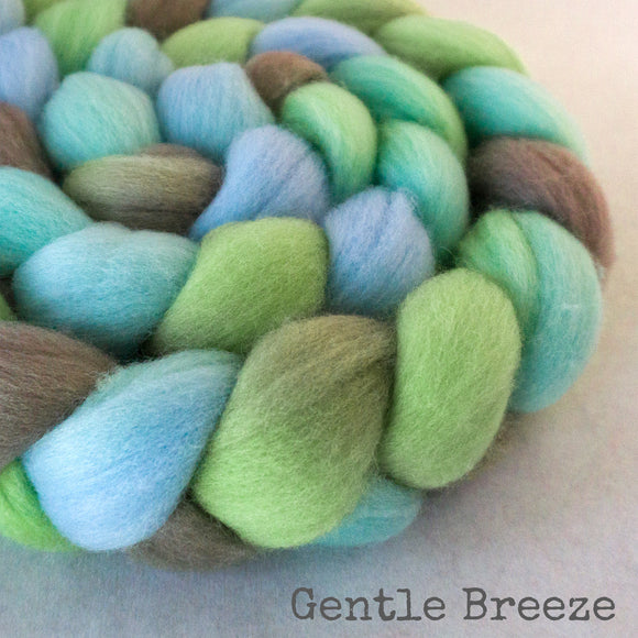 Polwarth Wool Roving - Gentle Breeze