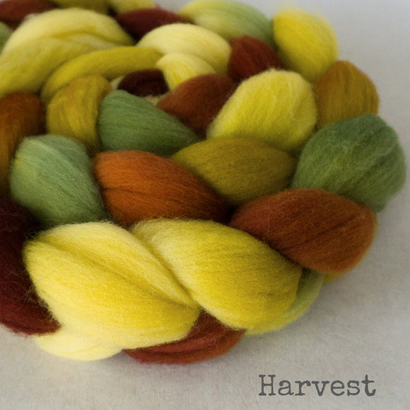 Targhee Wool Roving - Harvest