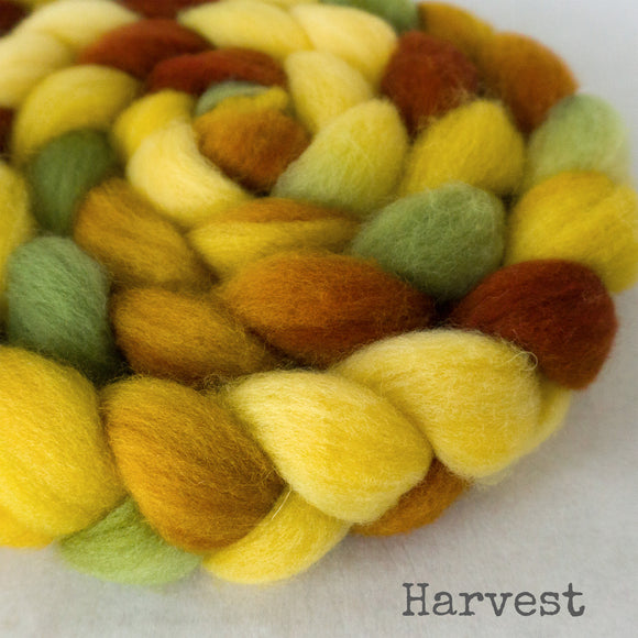 BFL Wool Roving - Harvest