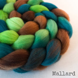 Polwarth Wool Roving - Mallard