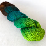 Simply Sock Yarn - Mallard Chroma