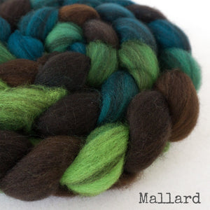 Mallard_1_with_name_ee03fee8-5125-424a-8dca-0feee2334425
