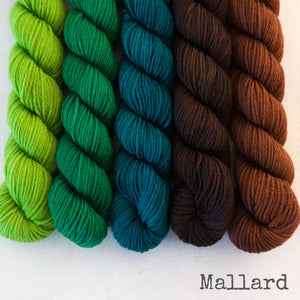 Simply Sock 5-Pack Mini Skeins in Mallard Semi Solid