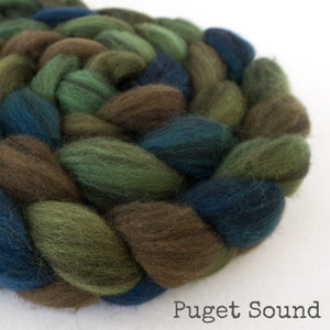 Puget_Sound_1_with_name