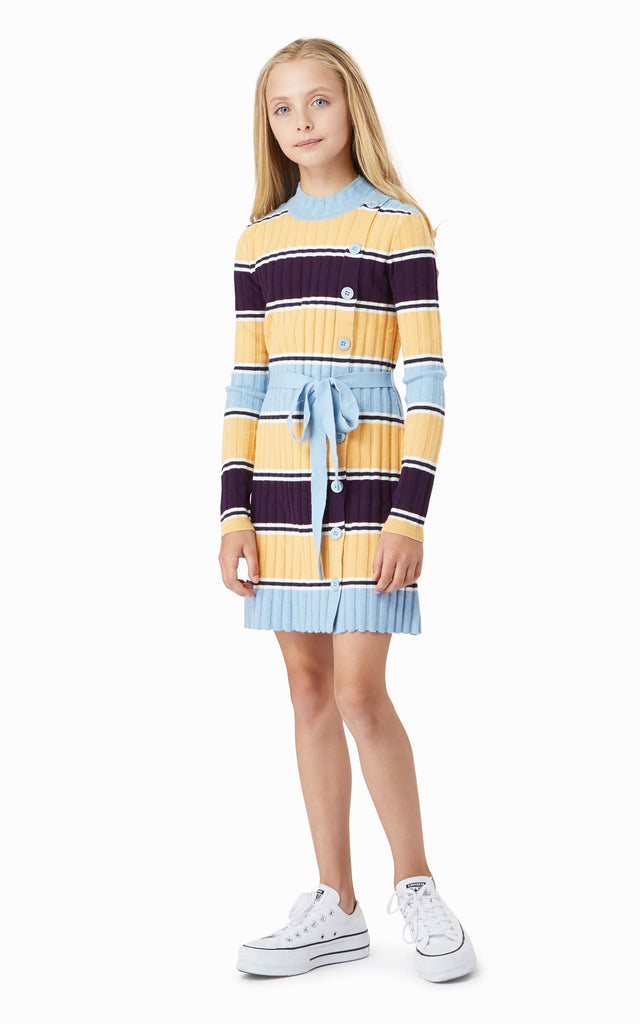 Maisie Stripe Dress