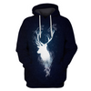 Hoodie Pull Over Harry Potter