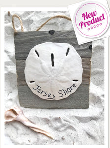Jersey shore sand dollar on dune fence ornament