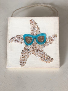 T1571 tiny shell starfish with sunnies