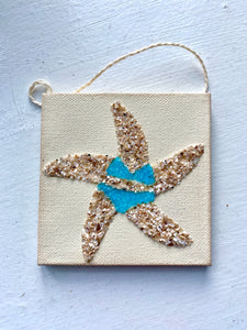 T1581 tiny shell starfish with aqua bikini