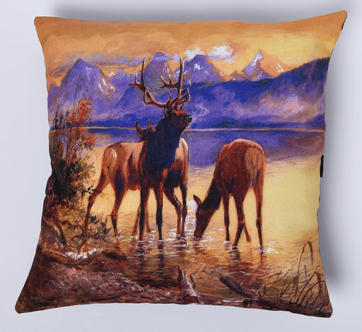 Digitally Printed Pillow Cover 202