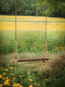 two person swing