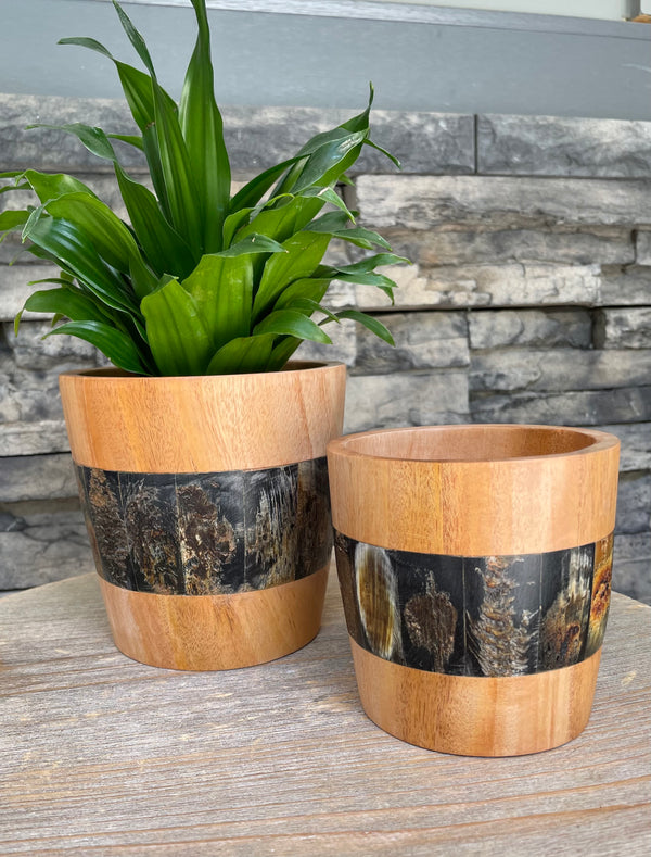 Mahogany and Horn Planters by Atelier Calla from Haiti
