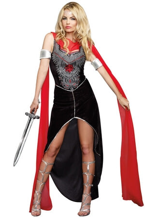 Sword Warrior Costume