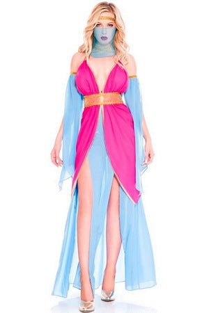 Harem Princess Costume