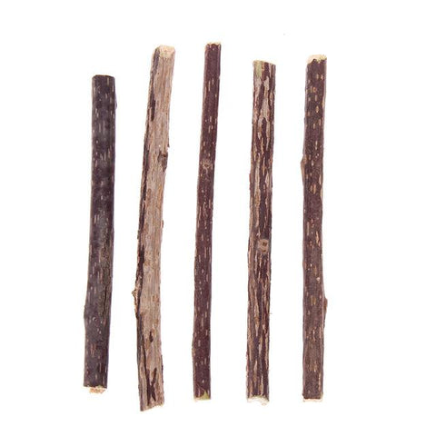 Animals & Pet Supplies > Pet Supplies > Cat Supplies > Cat Treats - Silvervine Cat Nip Sticks - Fun Dental Hygiene