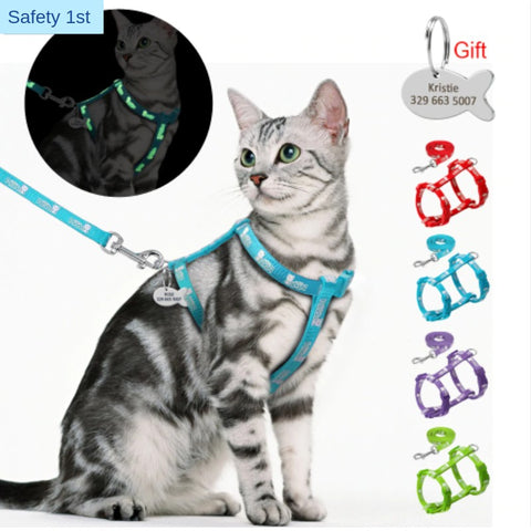 Animals & Pet Supplies > Pet Supplies > Pet Collars & Harnesses - Glow In The Dark Cat Harness Set/ *Personalized Name Tag Included*