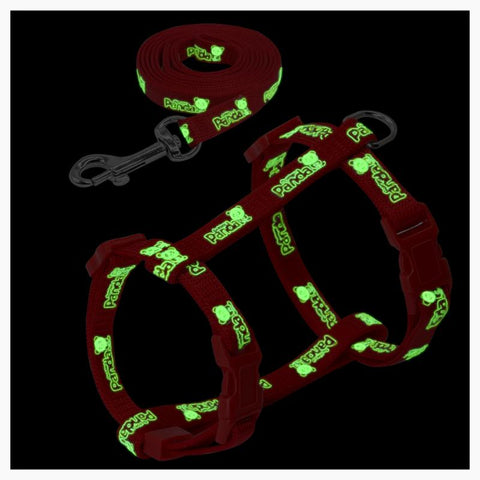 Cat - Glow In The Dark Cat Harness Set/ *Personalized Name Tag Included*