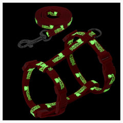 Glow in the Dark Cat Harness Set/ *Personalized Name Tag Included*
