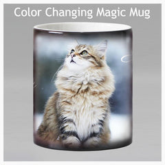 Maine Coon - Color Changing -  Magic Mug