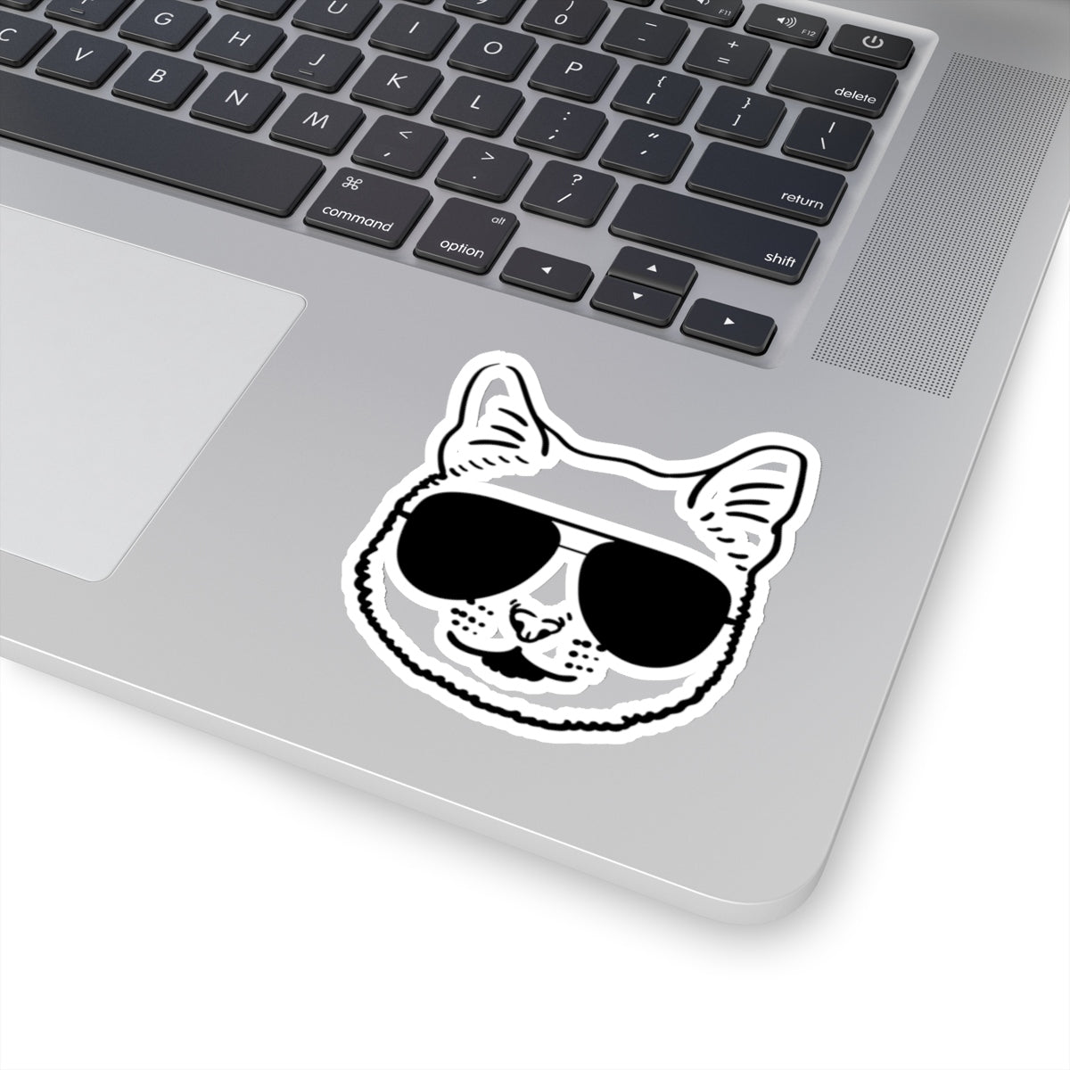 Cat Sticker, Cool Cat, Cool Cat Sticker, Sunglasses Sticker, Cat Decal, Sticker, Laptop Sticker, Journal Sticker, Water Bottle Sticker - jewelry-by-meesh