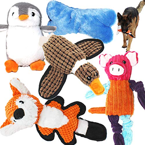 Value Bundle Dog Toys Assortment 5 Pack