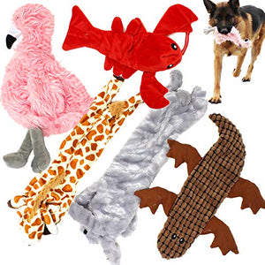 5 Pack Dog Squeaky Toys No Stuffing