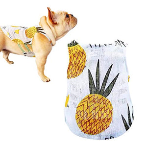 Pineapple Vest Dog Apparel