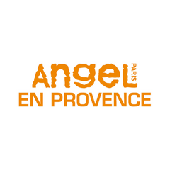 We Use and Recommend Angel En Provence Organic Based Hair Care