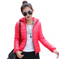 Hooded Coat Female Spring Jacket