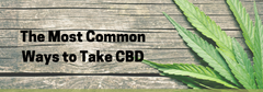 The Most Common Ways to Take CBD