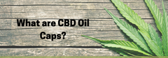 What are CBD Oil Caps?
