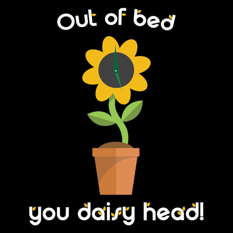 Out of bed you daisy head!
