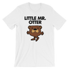 Little Mr. Otter