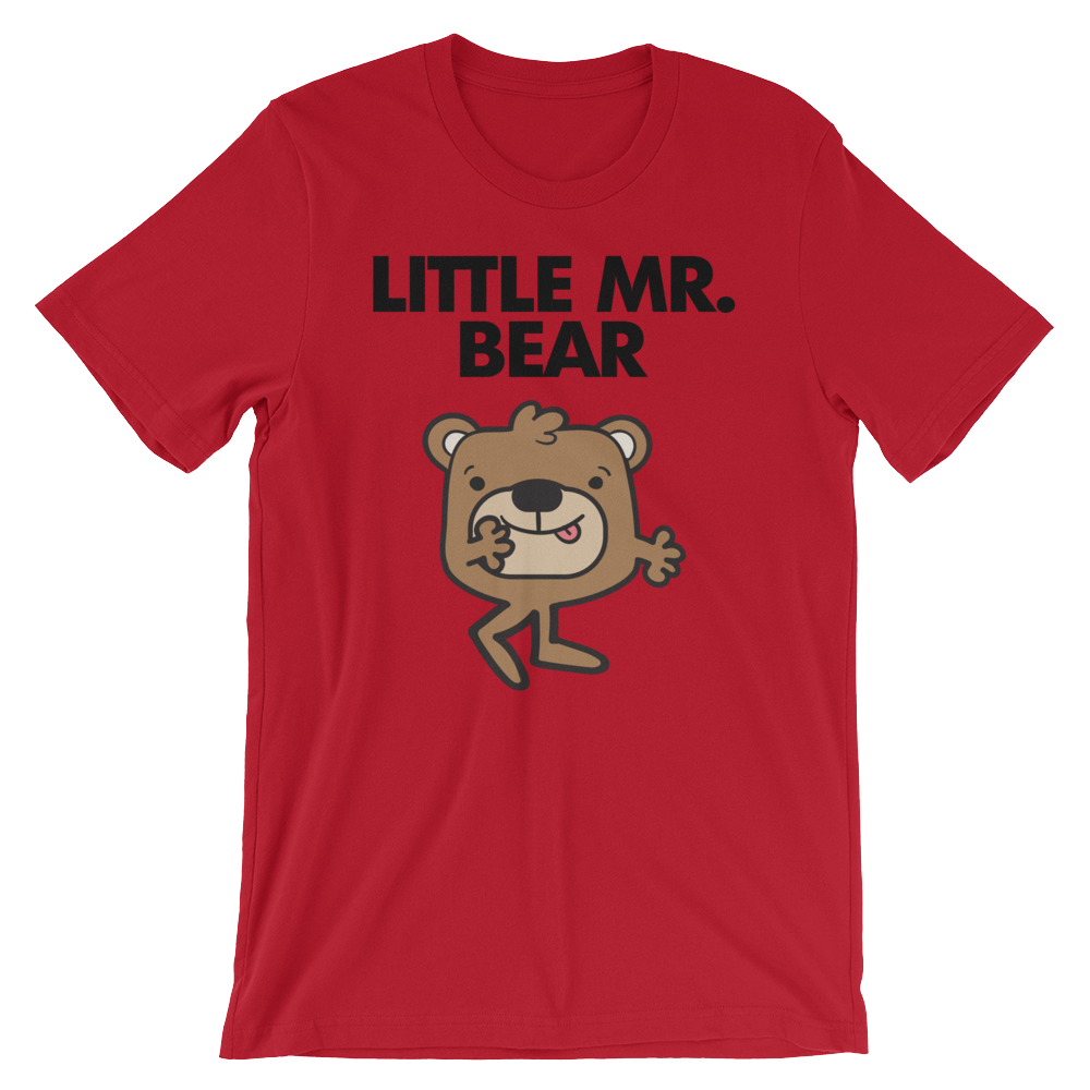 Little Mr. Bear